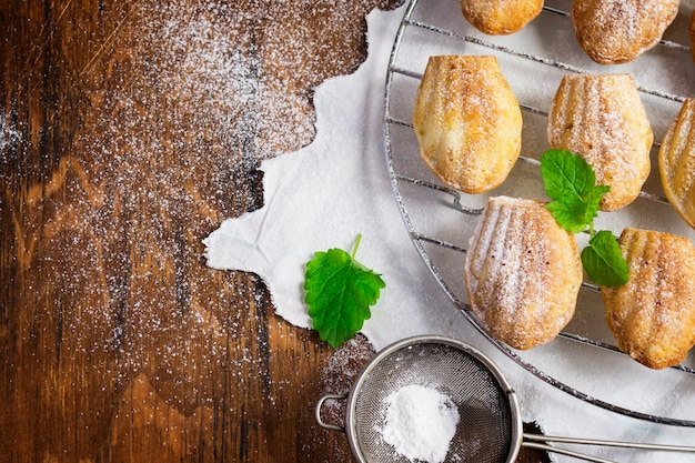Cookies madeleine and strainer with powdered sugar