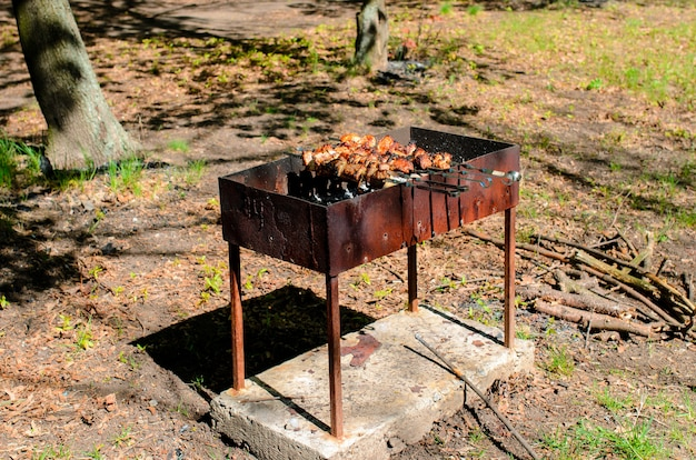 Cooking barbecue in nature.