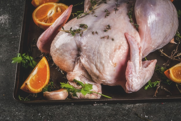 Cooking dinner for christmas thanksgiving traditional bird chicken or turkey with herbs oranges vegetables on a baking sheet ready for baking