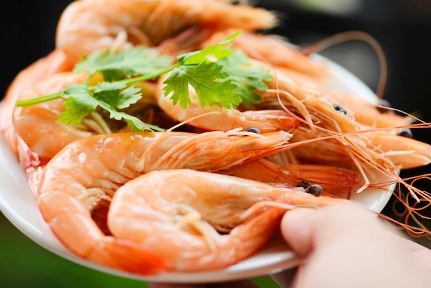 Cooking seafood shrimps prawns served with nature wall - fresh shrimp on white plate in hand with ingredients herb coriander