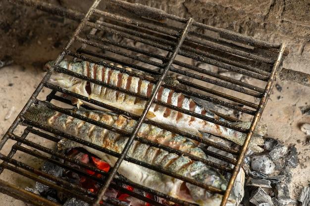 Готовим рыбу прямо над огнем