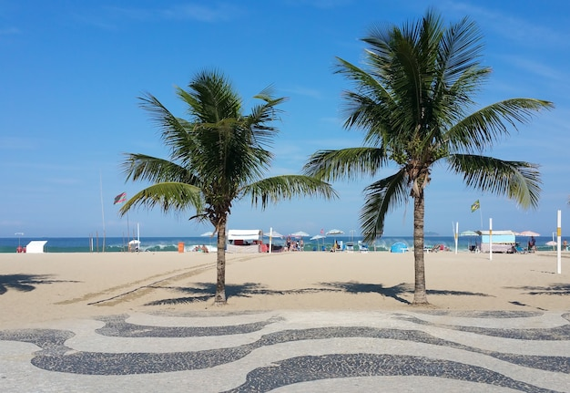Copacabana beach rio de janeiro boardwalk with palm trees and blue sky.
