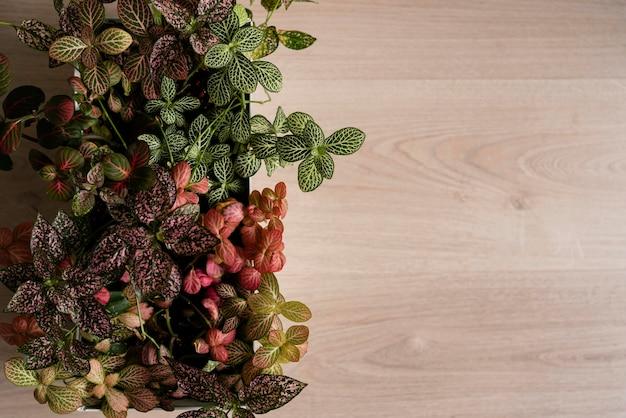 テーブルの上のスペース植木鉢をコピーします