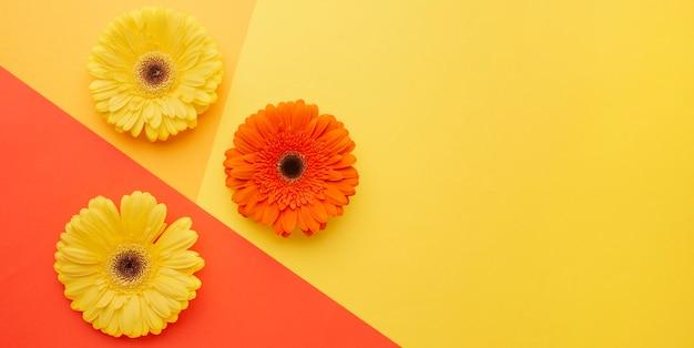 机の上にスペースの花をコピーする