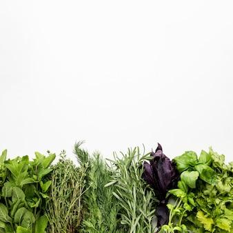 Copy-space greens condiments