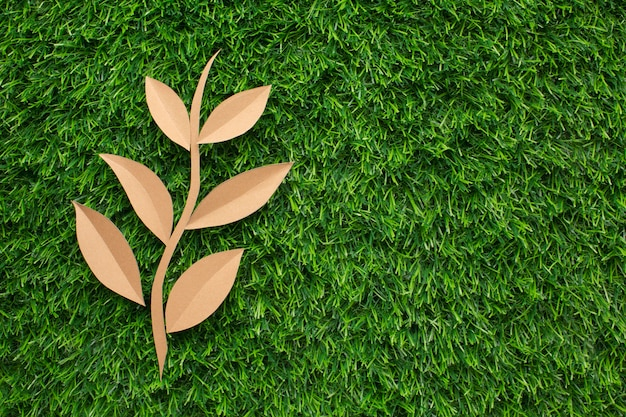 Copy-space leaf shape in grass