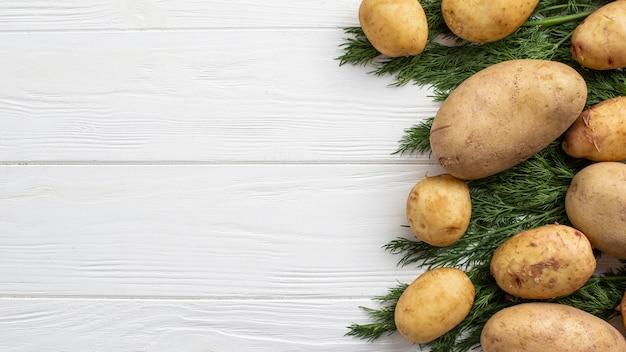 Копи-спейс картофель и укроп