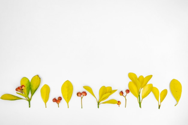 葉のスペース行をコピーします