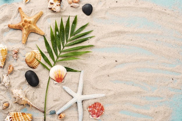 Copy-space starfish on sand