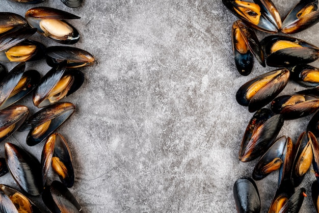 Copy space surrounded by mussels
