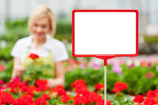 Copy space for your message. close-up of copy space on the commercial sign with woman arranging flowers on the background