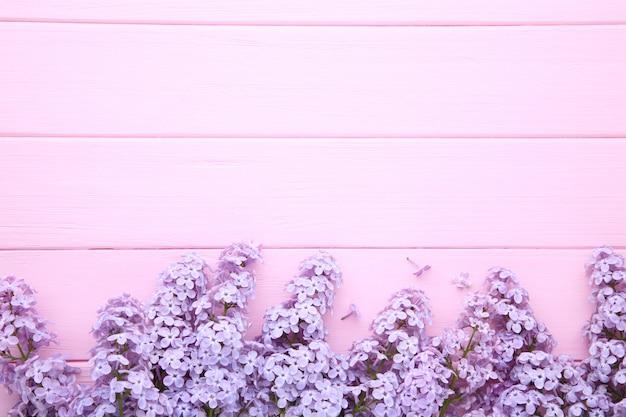 ライラック色の花の枝にcopyspaceとピンクの背景