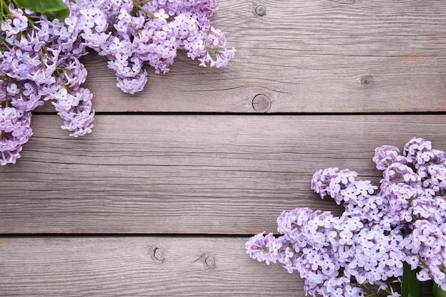 ライラック色の花の枝にcopyspace