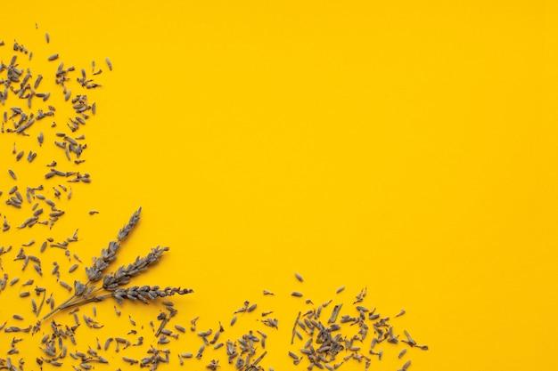 乾燥ラベンダーは黄色の背景、上面図、copyspaceに美しくレイアウトされています。