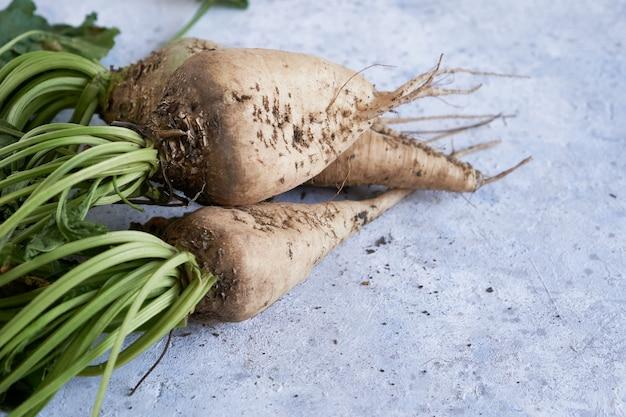 Осенний урожай овощей редиса copyspace