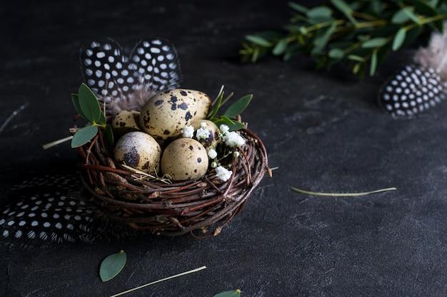 Концепция пасхи - декоративное гнездо ивы с перепелиными яйцами, перо на темной ржавой предпосылке. copyspace для текста