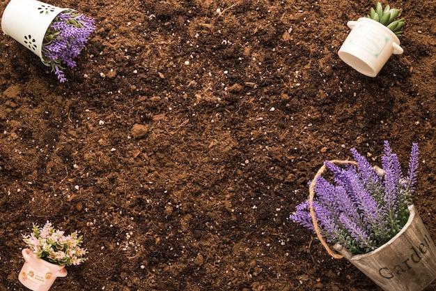 Copyspaceと土の上に植物のフラットレイアウト