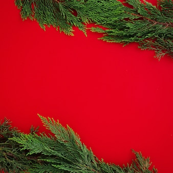 Copyspaceと赤の背景にクリスマスパインの葉