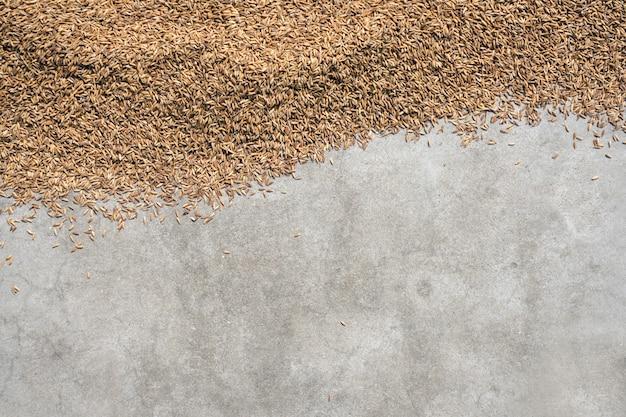 水稲または米copyspaceとイネの種子のトップビュー