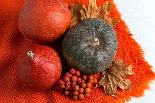 Яркая оранжевая теплая шаль, тыквы, ягоды и сухие желтые листья на белом фоне, осеннее настроение, copyspace.