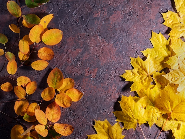 Copyspaceと茶色の石のテーブルに美しいカラフルな紅葉。秋の葉の背景