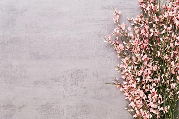 パステルテーブルのサンゴの花。