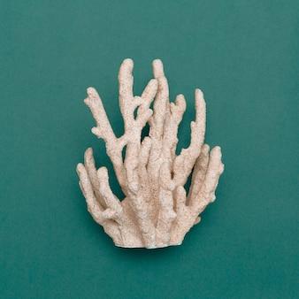 Коралл на синем marine concept minimal art