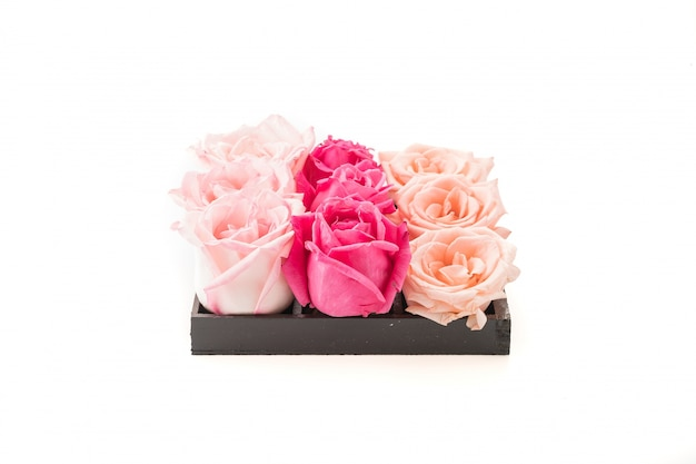 Coral and pink rose
