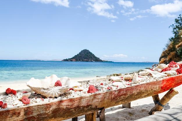 바다와 산이 있는 해변에서 긴 나무 컨테이너에 수집된 산호초