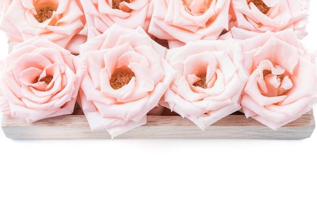 Коралловый роза
