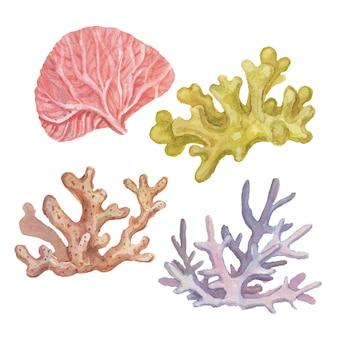 산호 바다 여행 해변 수채화 그림 손으로 그린 인쇄 직물 빈티지 복고 바다