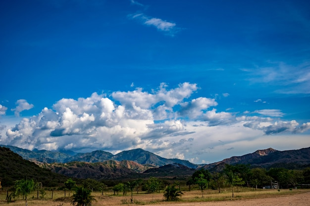 コルディレラ中央コロンビア