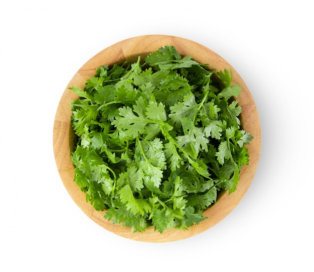 Coriander leaves in wood bowl on white table.