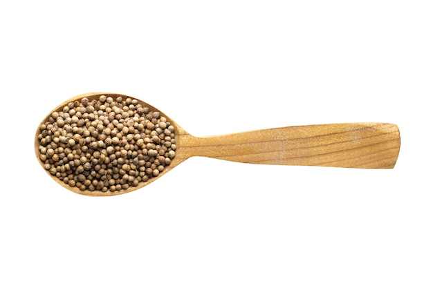 Coriander seed for adding to food. spice in wooden spoon isolated on white. seasoning of delicious meal.