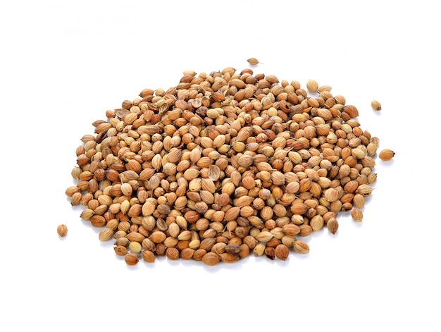 Coriander seeds isolated on white background
