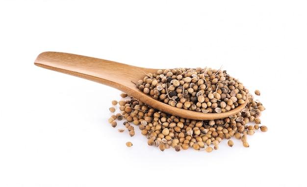 Coriander seeds in wood spoon