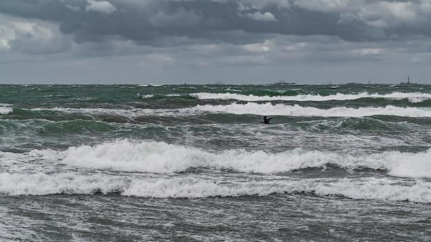 嵐の海の上を飛んでいる鵜