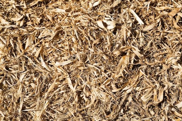 Кукуруза, початки, сушеные, текстура, фон