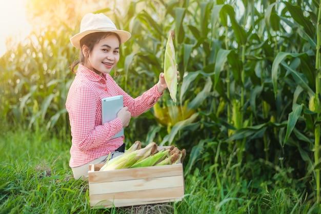 옥수수 농부들은 농산물이 아주 만족스러운 후 웃는 얼굴로 행복을 표현했습니다.
