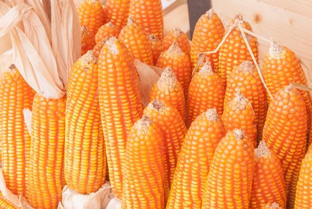 Corn groats and seeds