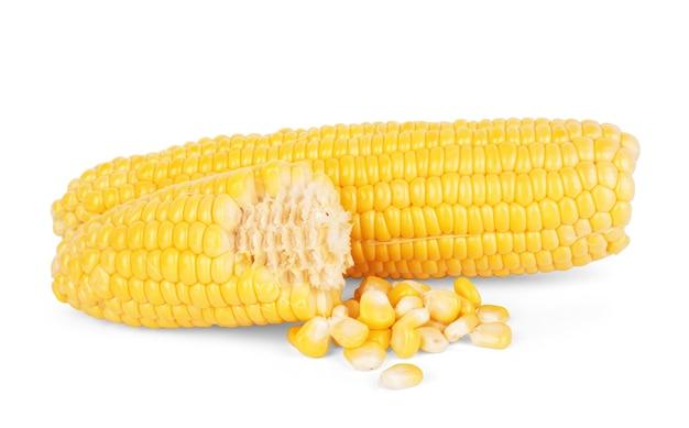 白い背景で隔離のトウモロコシ。