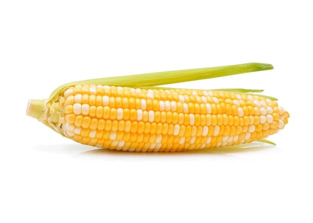 トウモロコシの分離