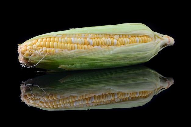 黒の背景に分離された穂軸のトウモロコシ