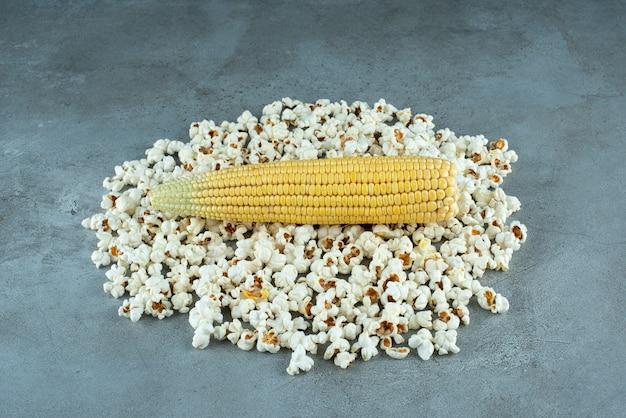 Semi di piante di mais e popcorn su sfondo blu. foto di alta qualità