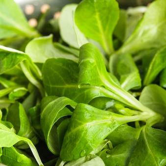 Кукурузный салат крупным планом в металлическом дуршлаге