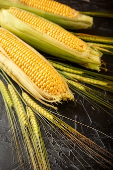 Corn and wheat spikes