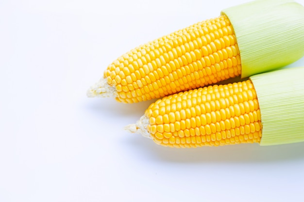 Corn on a white .