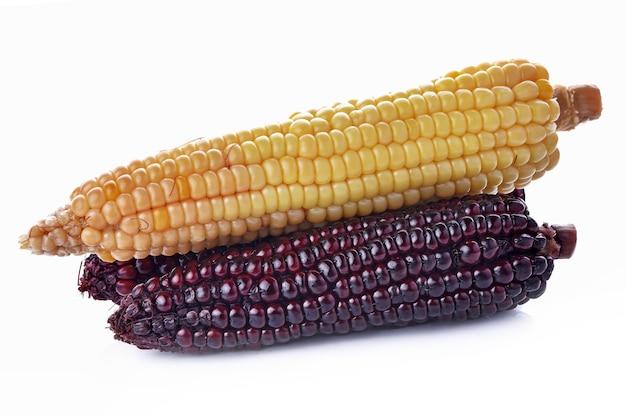 옥수수, 노란색, 흰색 바탕에 보라색