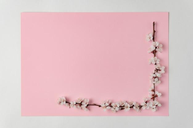 Угловая рамка из белых цветущих ветвей на розовом фоне. весенний фон. скопируйте пространство. шаблон.