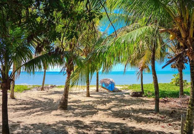 Пляж короа вермелья в порту-сегуро, баия - туризм и направления на северо-востоке бразилии - достопримечательности, путеводитель по бразилии